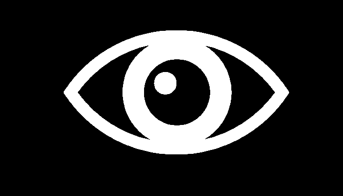 Phone eye - logo